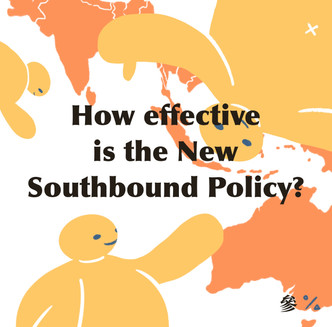 Domestic Debates: Is the New Southbound Policy Working