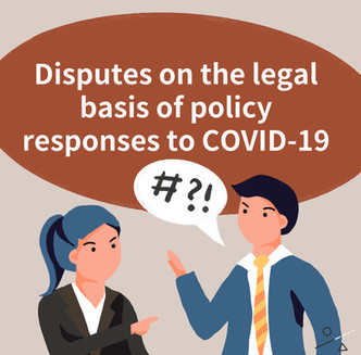 Disputes on the Legal Basis of Policy Responses to COVID-19