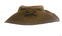Span Am hat 2