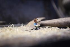 Minotaur on workbench