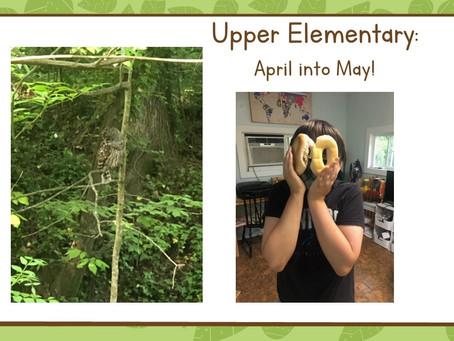 Upper El:  April into May!