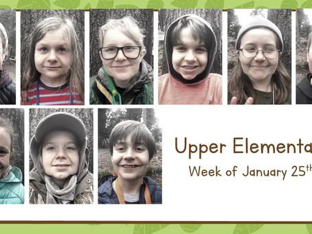 Upper El: 1/25-1/29