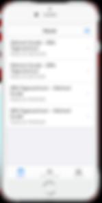 Screenshot-Fahrdienst_Auswahl_iPhone.png