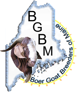 Maine Goat Show Information   Boer Goat Breeders Of Maine