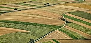 قطعة ارض للبيع في اربد بسوم الشناق دونم وربع