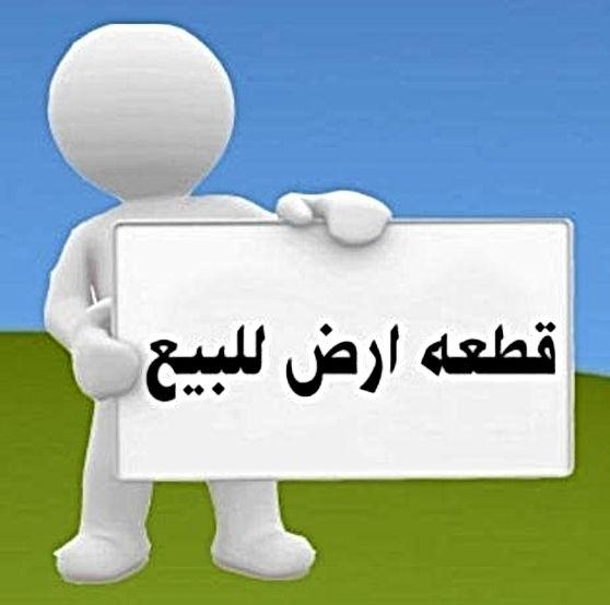 29570811_2031075220444445_63218229783458
