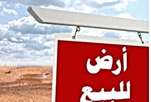 للبيع قطعه الأرض رقم ٨٠ من أراضي المفرق المذبحة الجنوبي ٧ السويلمه