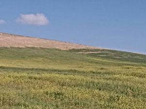 ارض للبيع في منطقة الرمثا بجانب مدينة الحسن