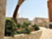 ارض ومزرعة للبيع في طريق البحر الميت