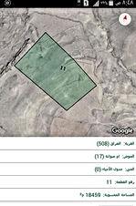 ارض 18 دونم بطلوا على البحر الميت بمنطقه العراق بالكرك ب ١١ الف