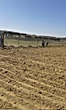 مزرعة في اللب مأدبا مساحتها 6 دونم و55 متر