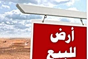 قطعة ارض سكنية سكن ب قرية البشرية أراضي البادية الشمالية محافظة المفرق