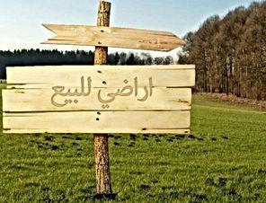 أرض للبيع بمحافظة عجلون بمنطقة اوصرة عشرة دونمات
