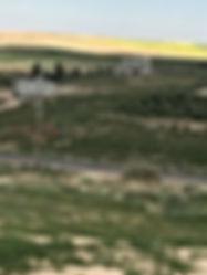 ارض مزروعة زيتون وفيها مساحه فارغة مساحتها 18 دونم وبداخلها حاووز ماء