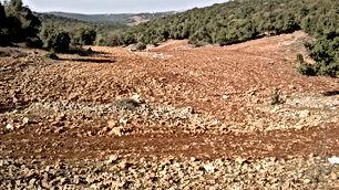 ارض للبيع في ام الرصاص جنوب عمان ١٠ دونمات حوض ضاعن