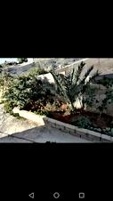 بيت مستقل مكون من طابقين على مساحة الارض 1150