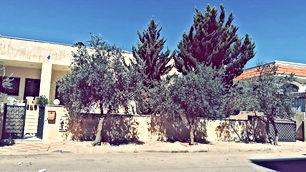 بيت مستقل عبارة عن شقتين واستديو للبيع في المقابلين قرب شارع الحرية على دونم أرض للبيع