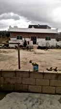 منزلين منفصلات عن بعض على ارض 1330 متر من المالك مباشرة للبيع