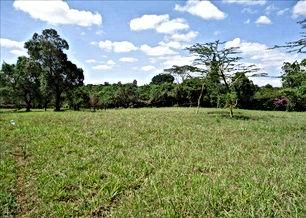 قطعة ارض في اربد زراعية 1098 متر مربع من المالك