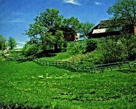 مزرعه زيتون مساحتها دونمين ونصف مسيجه بالكامل بداخلها منزل ريفي