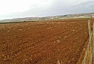 قطعة أرض للبيع في مادبا، المأمونية الشرقية خلف قصر السجود