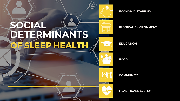 Social Determinants.png