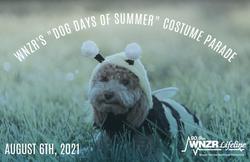 Dog Costume Parade 2021