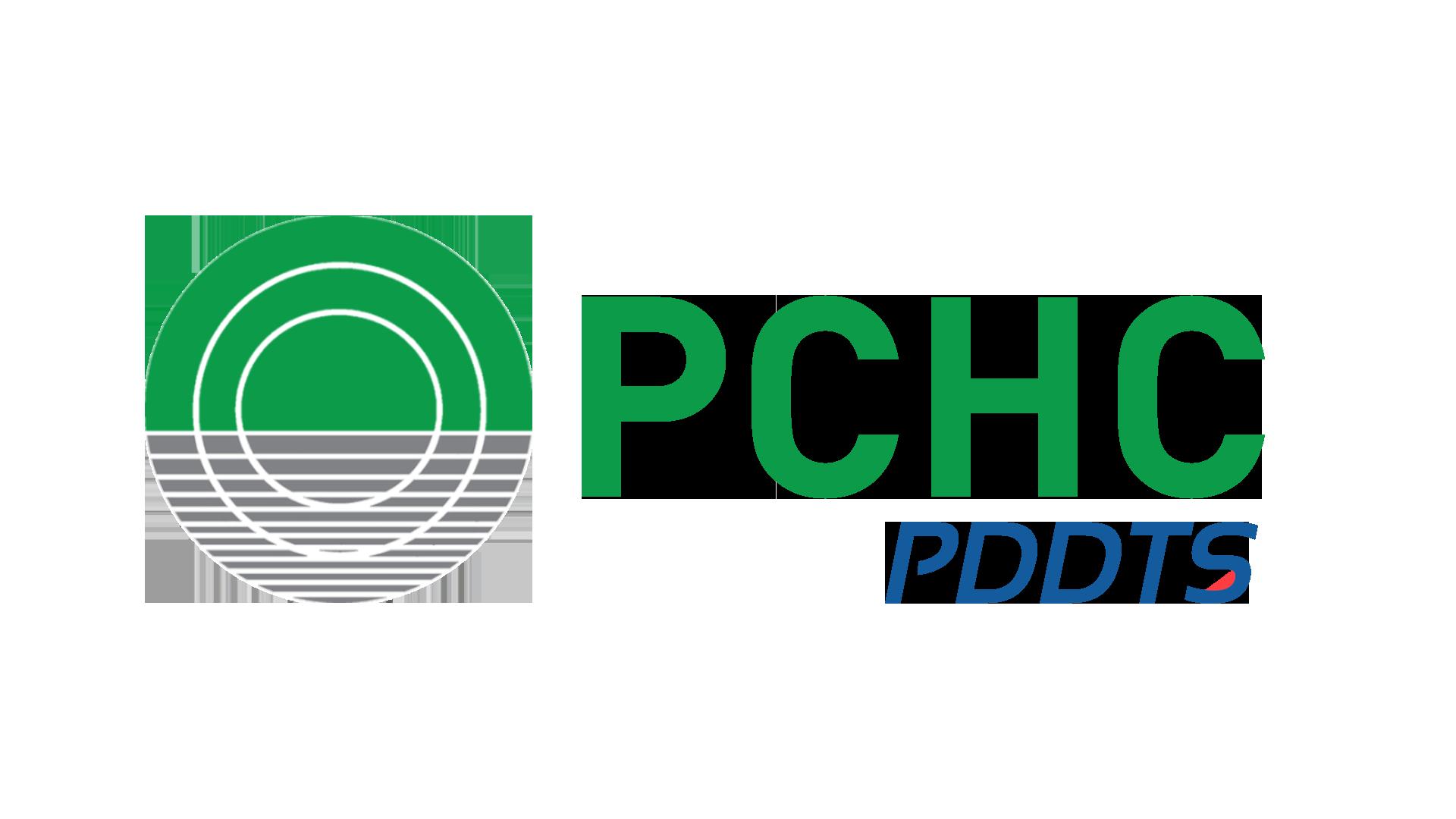 PDDTS