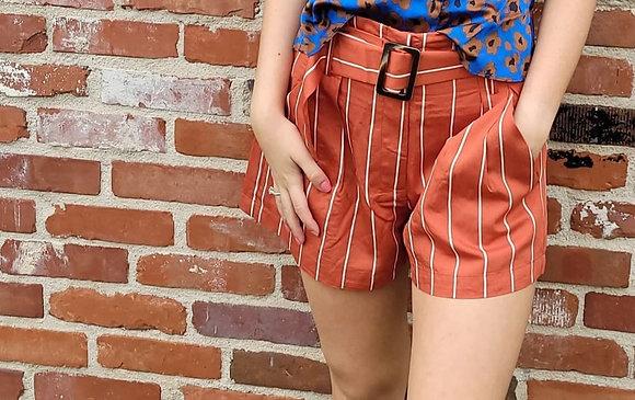 Cancun Striped Paper Bag Shorts