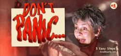 #3 Dont Panic