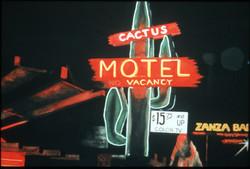 CactusMotel