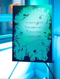 Sous La Mer - Annual Windham Hospital Gala 2019