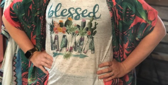 """Blessed"" Bella + Canvas Vintage Vneck"