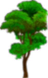 tree-md.png