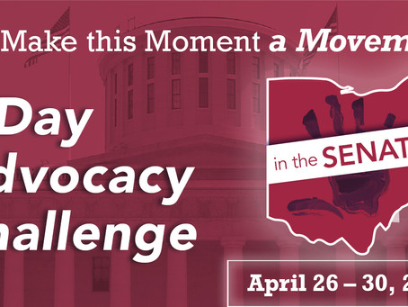 Virtual Advocacy Challenge: Be an Advocate for Ohio's Youngest Children in the State Budget