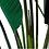 Thumbnail: Planta Ave del Paraíso