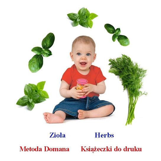 Metoda Domana Program ziołowy