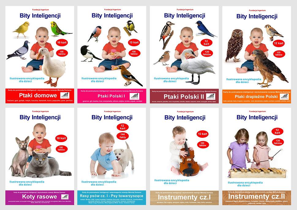 Bity inteligencji - flashcards karty do pomnażania inteligencji i stymulowania rozwoju neurologicznego u najmłodszych dzieci Metodą Domana flashcards angielski metodą Domana