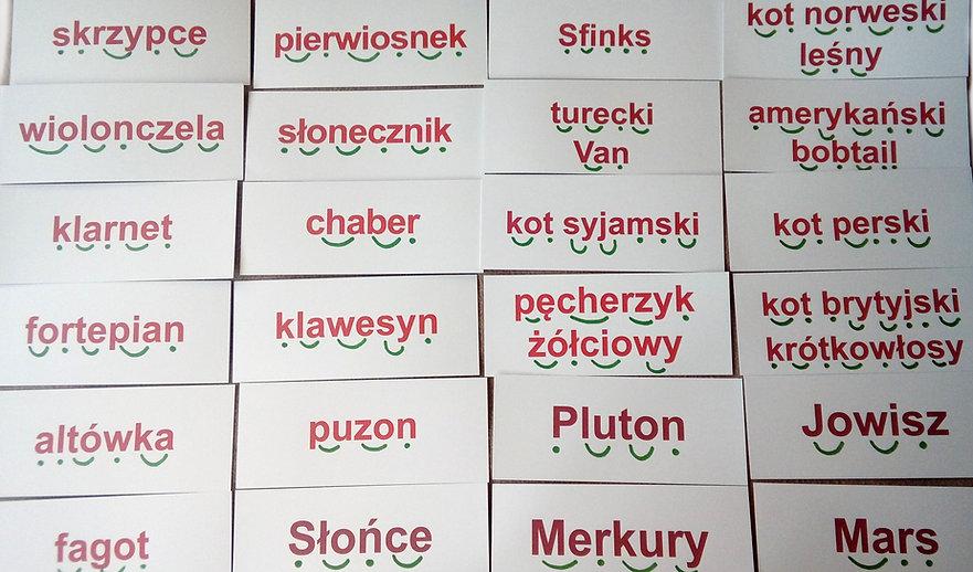 Metoda Domana Czytanie globalne Wczesna edukacja Metoda Domana Dysleksja karty obrazkowe metoda fonetyczna