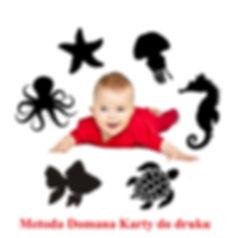 Metoda Domana Karty do druku do pobrania Wczesna edukacja Metoda Domana