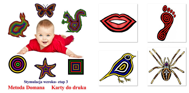 wczesna edukacja Metoda DomanaDoman Method Visual Stimulation flashcards for newborns