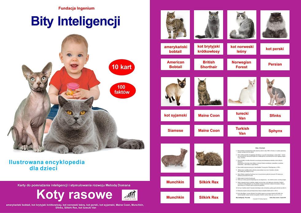Karty Bity inteligencji do pobrania Seria Koty rasowe karty typu flashcards angielski metodą Domana