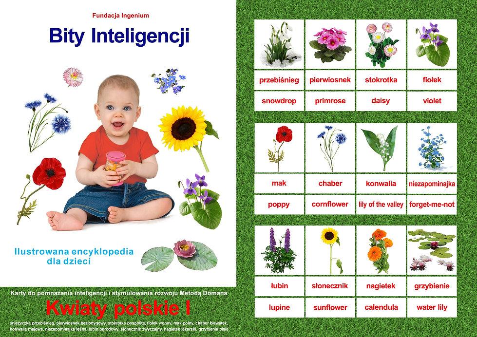 Bity inteligencji flashcards Seria Kwiaty I