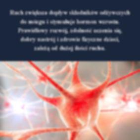 Wczesna edukacja Metoda Domana Ćwiczeni ruchowe Metodą Domana wsierają rozwój mózgu i synchronizację pracy jego poszczególnych obszarów.