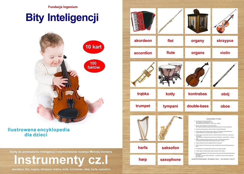 Bity inteligencji flashcards Instrumenty cz. I karty do pobrania