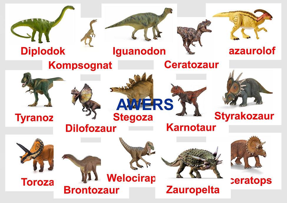 Wczesna edukacja Karty obrazkowe Dinozaury Bity inteligencji z rewersem