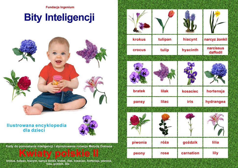 Bity inteligencji flashcards Seria Kwiaty II