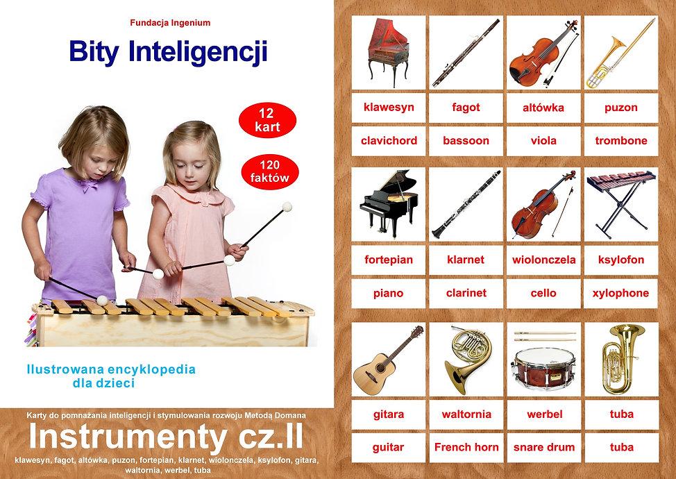 Bity inteligencji flashcards Zestaw Instrumenty cz. II karty f;ashcards do pobrania -angielski Metodą Domana