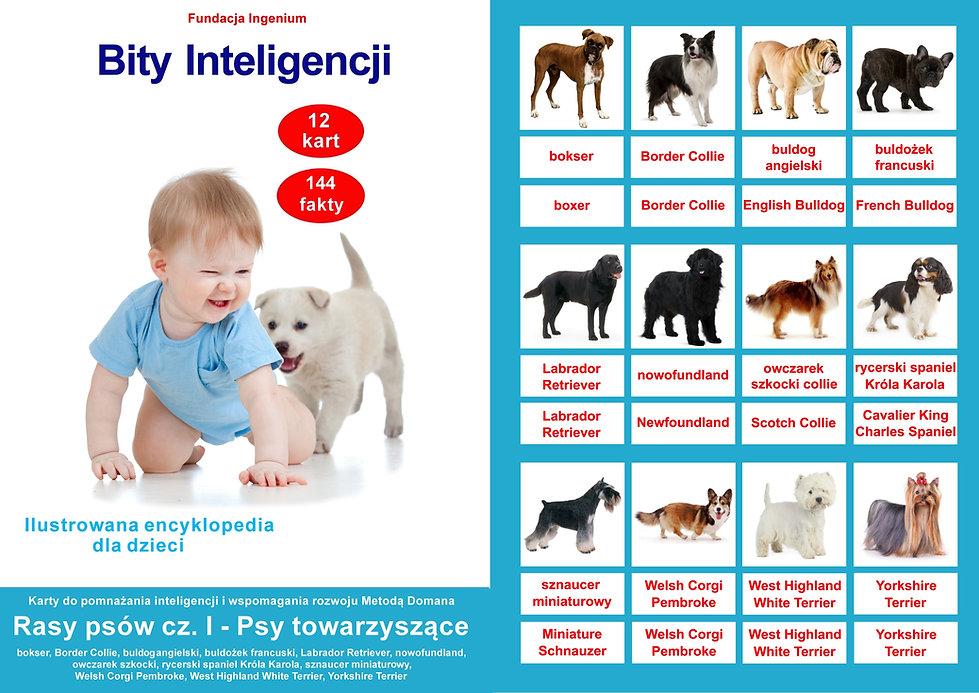 Bity inteligencji Rasy psów Psy towarzyszące karty do pobrania