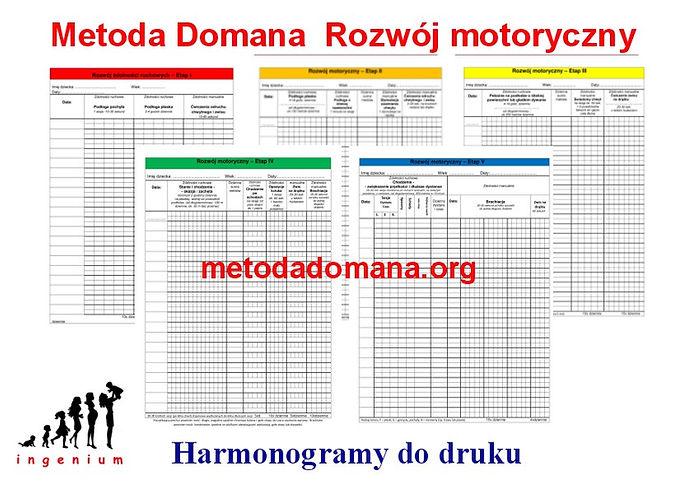 Harmonogram Metody Domana.JPG